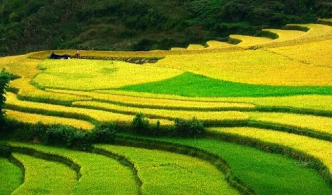 Circuit randonnée Vietnam