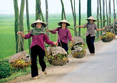Voyage Vietnam en 10 jours