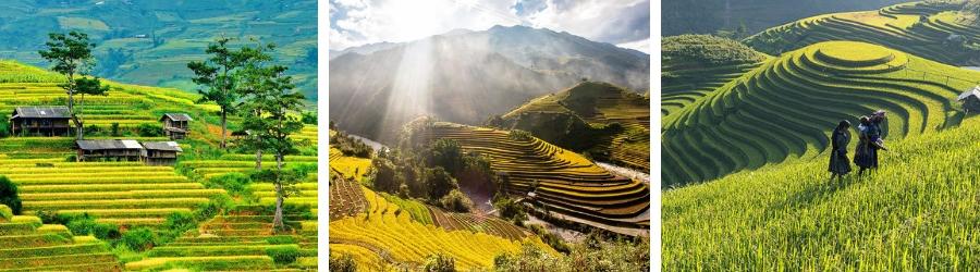 Circuit au Vietnam pas cher