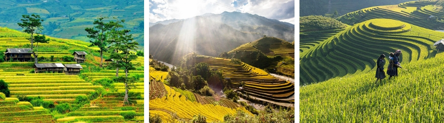 Circuit Vietnam pas cher