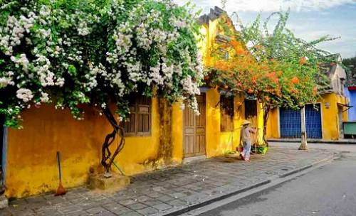 Circuit Parfum du Vietnam en12 jours