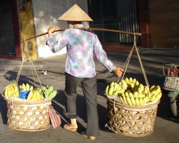 Découverte des ethnies du Nord Vietnam en 15 jours