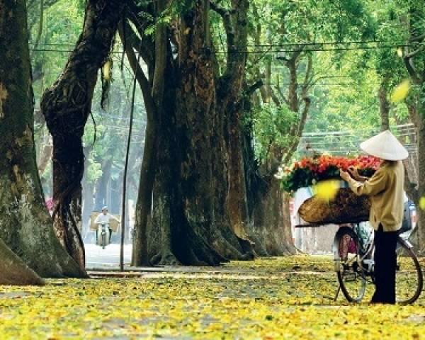 Vacances au Vietnam et Cambodge en 12 jours