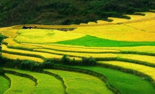 Profondeur du Vietnam en 25 jours