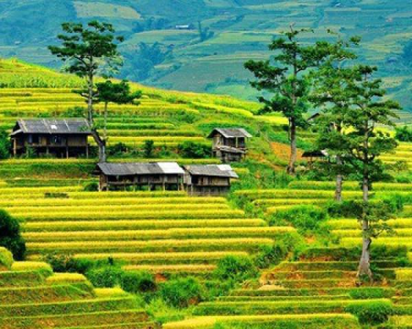 Voyage au Nord du Vietnam en 9 jours