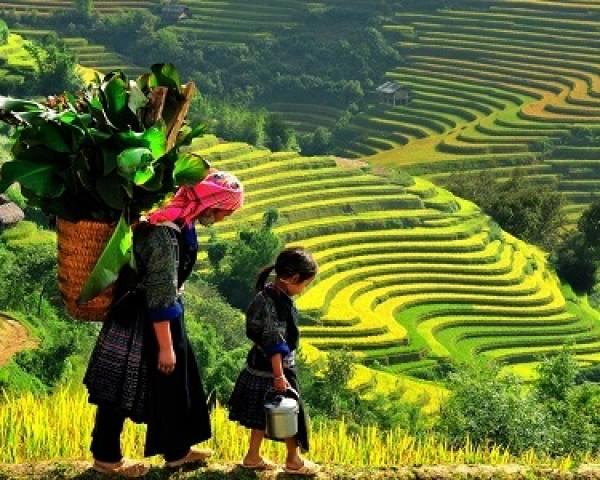 Voyage équitable 22 jours Vietnam et Cambodge