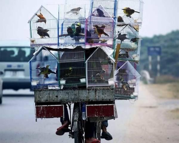 Voyage Vietnam extension plage Phu Quoc en 30 jours