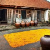 Immersion dans les villages métiers artisanaux et traditionnels autour de Hanoi