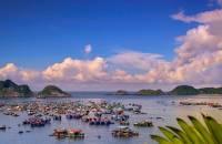 Une journée kayak à Cat Ba, alternative à la croisière dans la Baie d'Halong