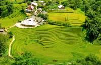 Voyage Sapa: Quelle est la meilleure période pour visiter Sapa ?